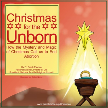 Picture of Christmas for the Unborn E-Booklet