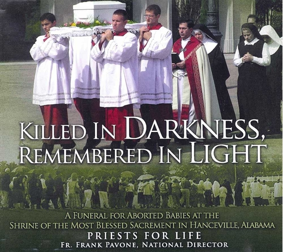 Picture of Killed in Darkness; Remembered in Light