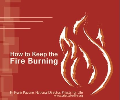 Picture of How to Keep the Fire Burning!