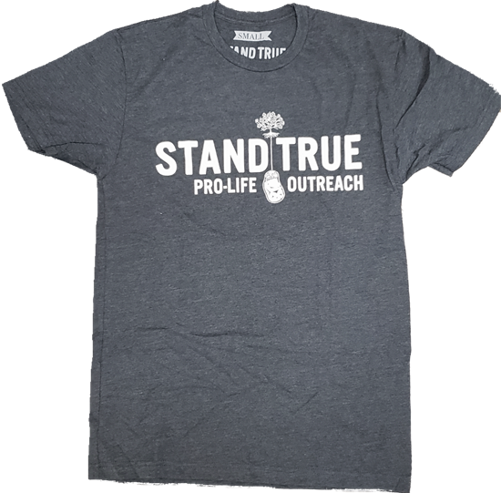 Picture of Stand True logo (grey) t-shirt