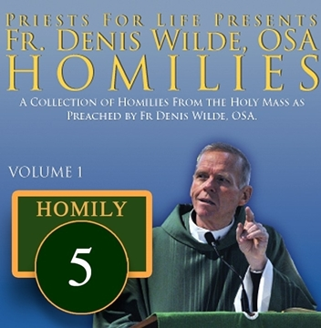 Homily by Fr. Denis Wilde, OSA - That the Course of World May be Directed by Peace of Your Rule