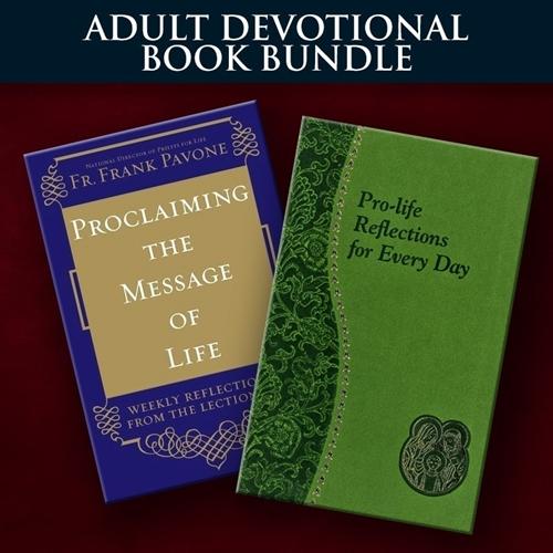 Christmas Book Bundle for Adults
